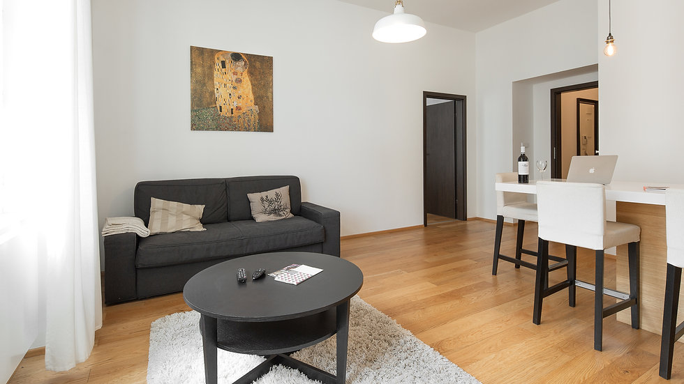 Riverside area apartment near the Dancing house!