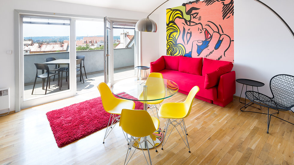 Great loft with terrace overlooking Prague!