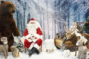 Studio Photo de Noël pour entreprises