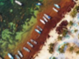 Vista aérea de los esfuerzos de remoción de sargazo en Puerto Morelos, Quintana Roo.Credit:Rodrigo A