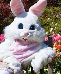 easter-bunny-pictures-nashville-tn.jpg