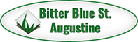 Bitter-Blue-St.-Augustine2.png