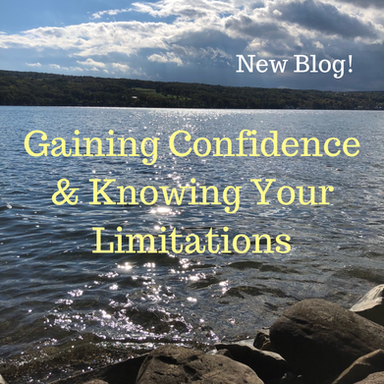 Epilepsy Guide: Confidence & Limitations