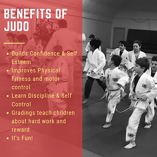 Benefits of judo.png