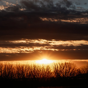 Sunrise -Sunset
