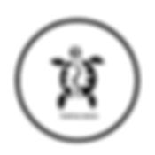 Turtle Bags Logo 2020.webp