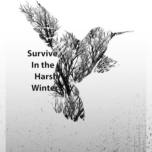 Survive In The Harsh Winter