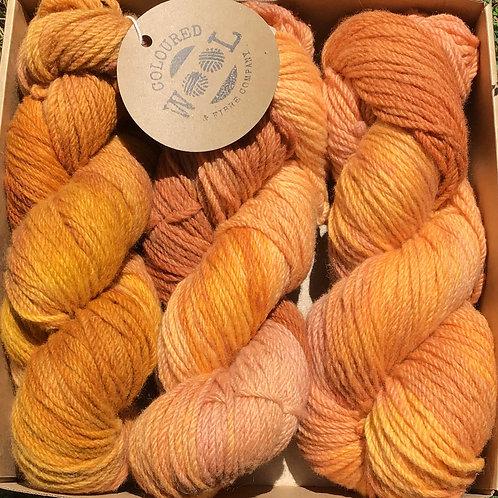 Burnt oranges Polwarth gift pack