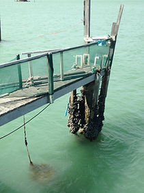 Wharf and Jetty Repairs and Maintenance