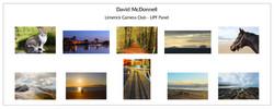 Dave McDonnell LIPF