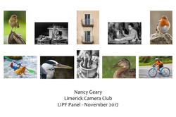 LIPF Nancy