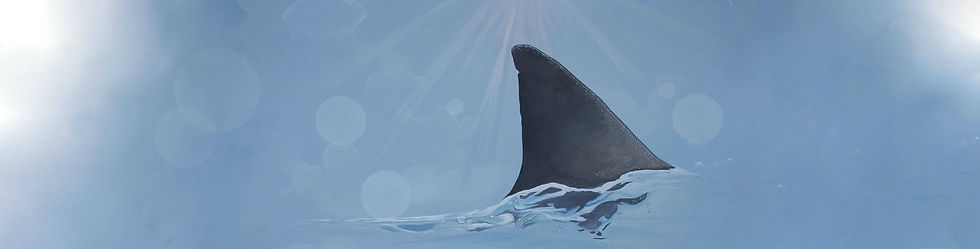 Portland Mural Shark Logo