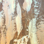 Contemporary Metallic plaster texture.jp