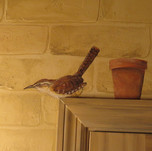 Wren bird mural bathroom