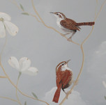 Carolina Wren Bird Mural