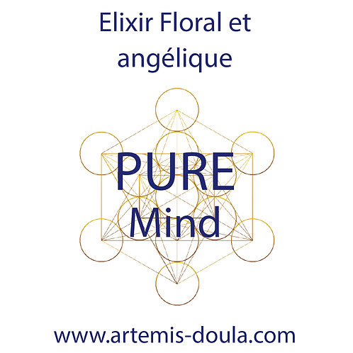 Synergie PURE MIND