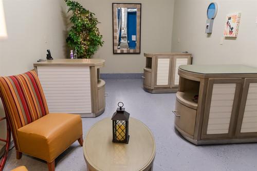 Feline Grooming Room