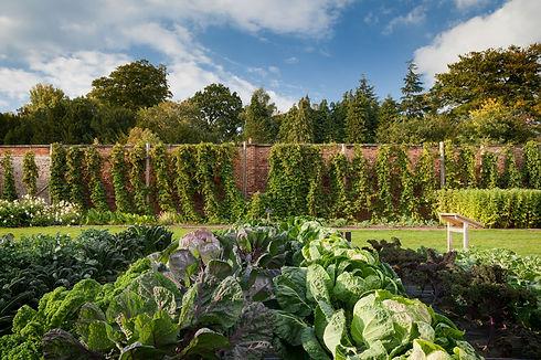 Walled Garden in September credit Harewo
