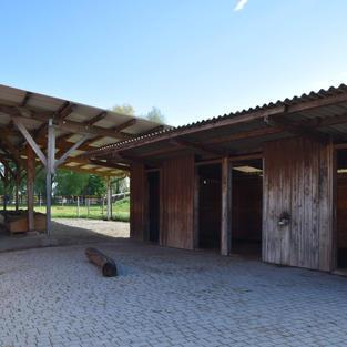 Ponyhof Letzau