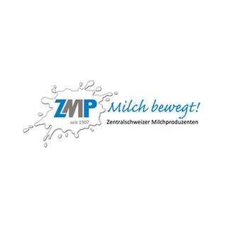 ZMP.jpg