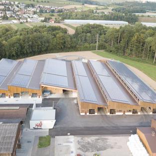New stable in Mülligen