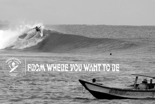 Surf Trip with a difference!