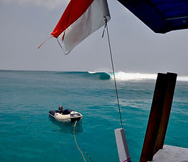 surf charters - Nyata