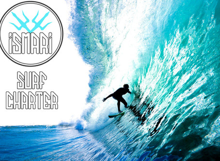 Small Group Surf Charter