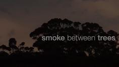 Smoke Between Trees - Feature Film 2020