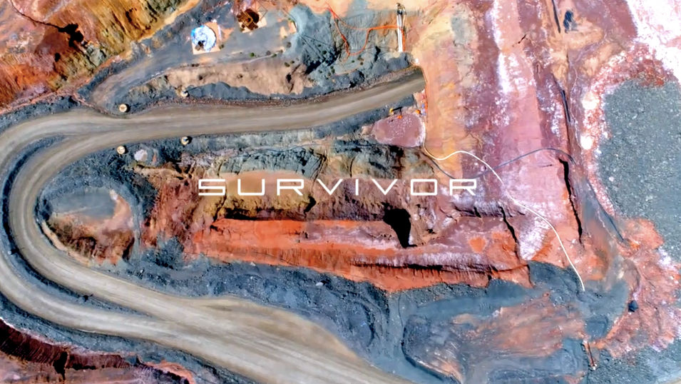 Survivor 2019