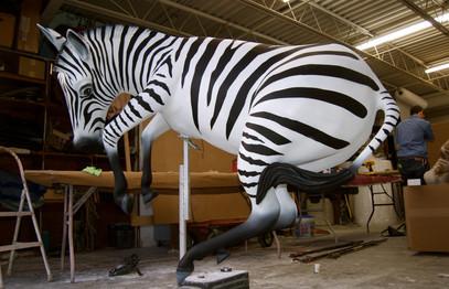 Nat Geo Zebra Exhibit NBA