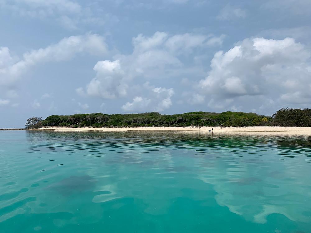 Lady Musgrave Island, Island, Great Barrier Reef, Ocean