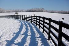 Snow on the Farm.jpg