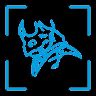 Mister Rhino Studio - Logo Variations [M
