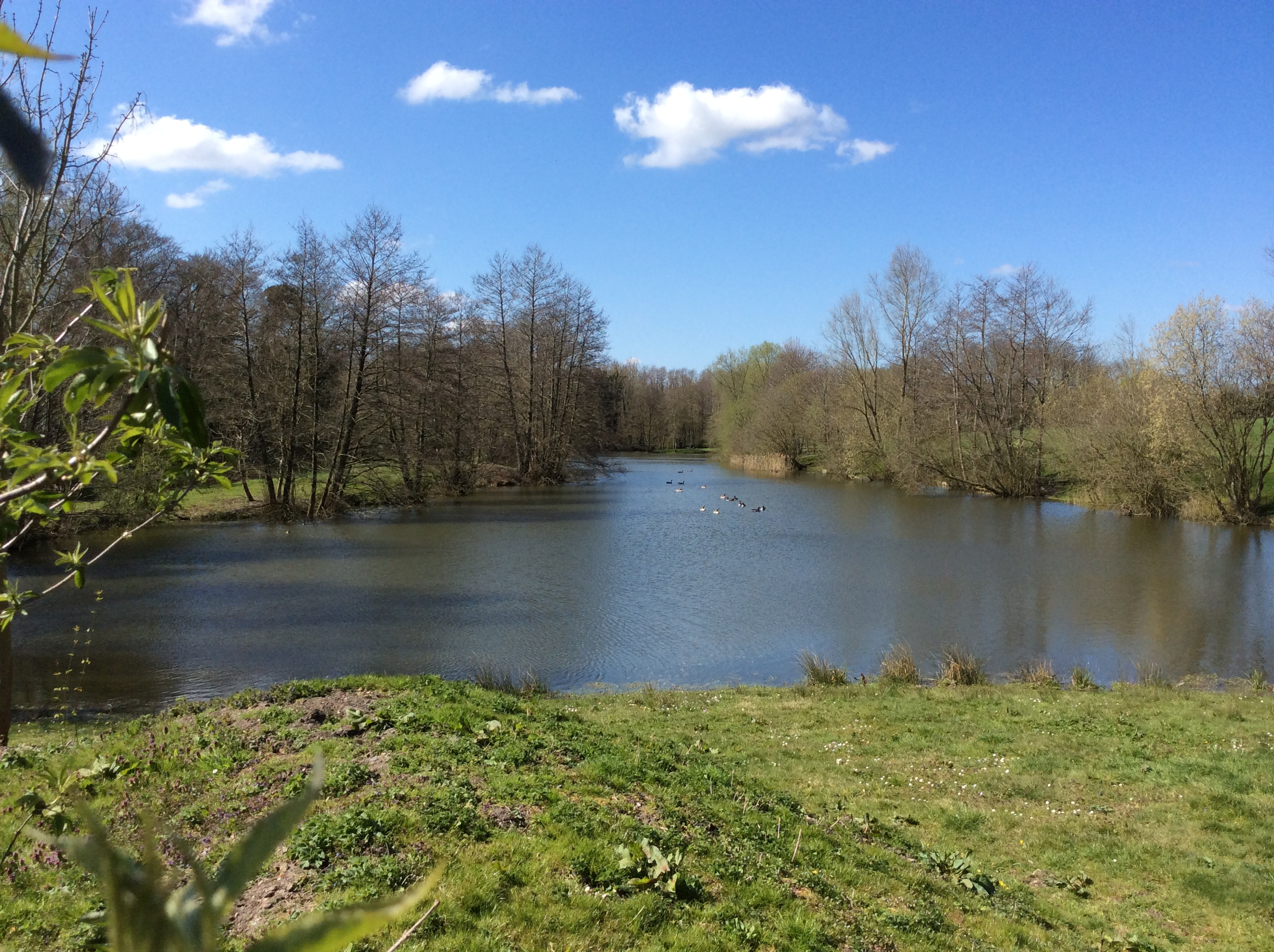 Small Lake Peg