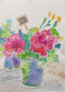Flower Pails - NFS