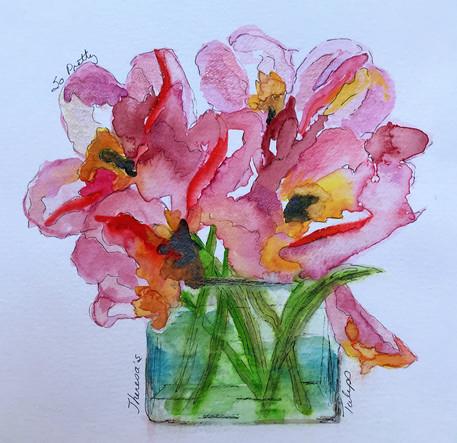 T's Tulips - NFS