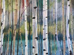 Birches- Sold