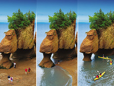 Porque escolher New Brunswick