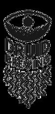 logo_druid_schrift_edited.png