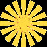 ds-starburst.png