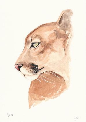Marilia Klein Aquarela Animal Arte12b Gramado Arte Acessível