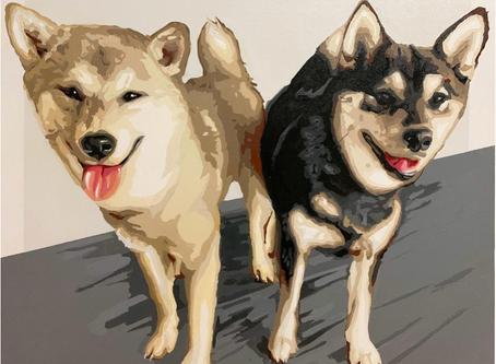 Artista plástico Vitor Senger pode eternizar o seu Pet em forma de arte