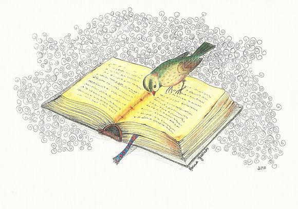 Marcia Guerios Arte12b Gramado Arte Pássaros Livros Acessível