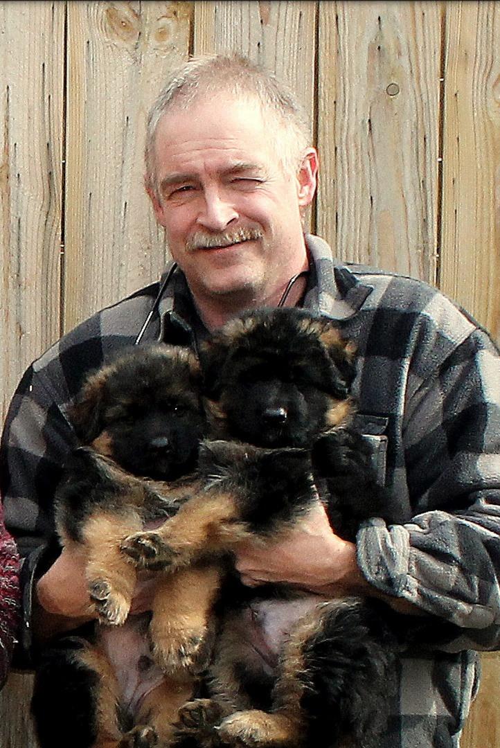Bob & Pups