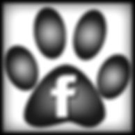 FacebookPawPrint-300x300 website.jpg