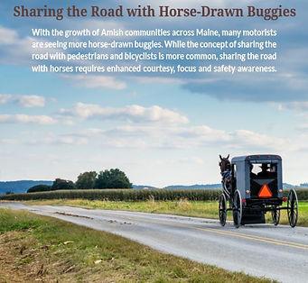 Horse & Buggy.JPG