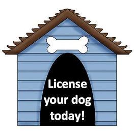 Dog Licensing.jpg