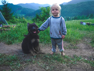 How to Ensure Your Child and Pet Are a Match Made in Heaven