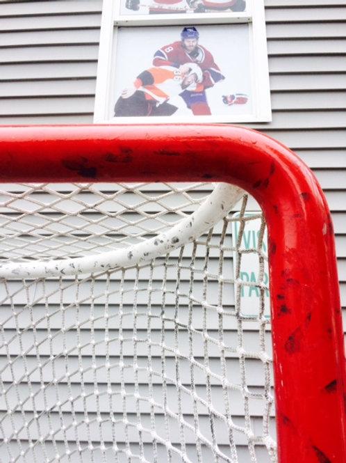 NHL Pro Hockey Goal